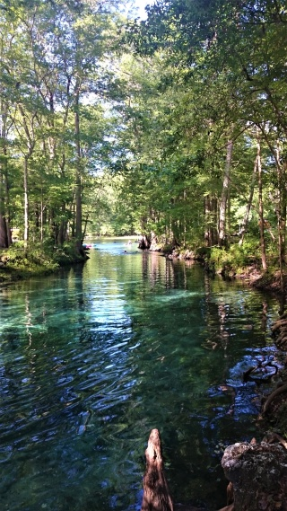Ginnie Springs_2