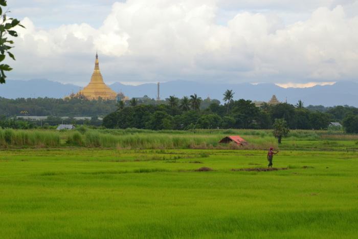 Barma_2